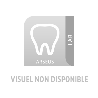 IPS d.SIGN A-D IVOCLAR VIVADENT Dentine brillante blanc - Le pot de 20 g